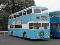 56, XDH 56G, Daimler Fleetline CRC6-36, Northern Counties Body (H51-34D), 1968 (2) (Andy Reeve-Smith) Tags: walsall walsallcorporation westmidlandspte wmpte daimler daimlerfleetline fleetline cummins crc636 56 xdh56g 1968 northerncounties ncme showbus 2018 showbus2018 derbyshire derbys leicestershire leics neleics doningtonpark donington castledonington