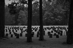Skogskyrkogården 16 Dec 2018 (Andreas Norstedt) Tags: theforestcemetery skogskyrkogården stockholm sonya7ii nikon50mmf18d flickrchallengewinner flickrchallengegroup