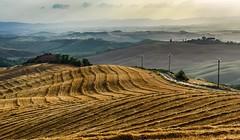 Tuscan evening. (AlbOst) Tags: tuscany tuscanlandscapes eveninglight hazy italy italianlandscapes fields