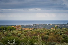 The beauty of Agrigento (Claude-Olivier Marti) Tags: sicile sicilia sicily italie italia italy europe agrigento temple