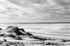Saint-Trojan en noir et blanc (yannfourel) Tags: plage sainttrojan monochrome noir et blanc dune mer océan nuages nuageux pause longue nikon d7500