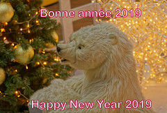 Bonne année 2019 - Happy New Year 2019 (p.franche On - Off) Tags: sony sonyalpha65 dxo photolab bruxelles brussel brussels belgium belgique belgïe europe pfranche pascalfranche schaerbeek schaarbeek dockx ours peluche bonneannée 2019 centrecommercial lumières voeux bonheur santé bear teddy happynewyear mall lights wishes happiness health
