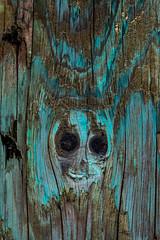 Mr. Balloon-Face (Katrina Wright) Tags: dsc3017 wood texture pattern abstract surreal ghost clown alien balloon scary evil horror imagination pareidolia