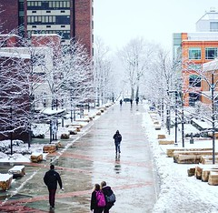 Please be safe traveling back to campus this weekend! There is a WINTER STORM WARNING in effect from 4pm on Saturday to 4pm on Sunday. #npsocial #newpaltz #sunynewpaltz #hudsonvalley (New_Paltz) Tags: suny new paltz college university ny hudson valley