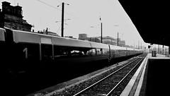 ...en gare de Strasbourg  - ... In station of Strasbourg (Philippe Haumesser (+ 7000 000 view)) Tags: railway lines sky urbex gare train station strasbourg alsace elsass france basrhin 67 noiretblanc blackandwhite monochrome nikond7000 nikon d7000 reflex 2018 chemin de fer lignes ciel bâtiment