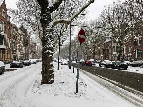Snow in Rotterdam