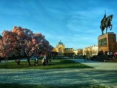 Spring is coming to Zagreb (Anđelko1986) Tags: sakura croatia zagreb oneplus6 urban spring travel city