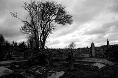 The Waking Storm (JamieHaugh) Tags: clevedon somerset england uk gb britain outdoors sony alpha ilce7rm2 zeiss a7rii graves graveyard church churchyard spooky storm weather clouds sky grass stones crypts waking moody atmosphere trees fence day grey
