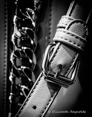 Day 318. (lizzieisdizzy) Tags: buckle bag macro metal shiny leather stitching chain dof depthoffield chainlink accessory fashion