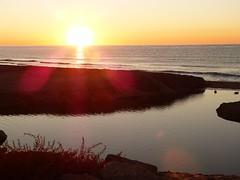 Primer amanecer 2019 (14) (calafellvalo) Tags: amaneceralbasolcalafellseaalbadasunrise amanecer sunrise amanecerdelaño2019 alba albada sea mar calafellvalo contraluz calafell aves gaviotas