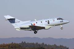 92-3026_HawkerU-125A_JapanASDF_RJAH_Img04 (Tony Osborne - Rotorfocus) Tags: hawker raytheon 125 series 800 u125 u125a japan air selfdefense force hyakuri ibaraki rjnh 2018