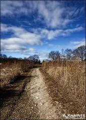 Avalon Park... (angelakanner) Tags: sonynex6 avalonpark winter bluesky path clouds