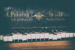 The Grand Piano (michael_hamburg69) Tags: lostplace offthemap abandonedplace urbanexploration urbex phototourmit3daybeard3tagebart castle schlos schloss rittergut herrenhaus manor gutshaus piano flügel klavier musikinstrument instrument pianoforte apokornyinwien 1905 grandpiano