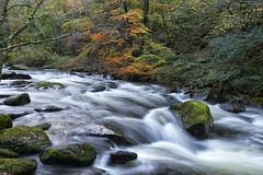 Along the river Lyn (chairman.bill) Tags: devon westlynriver autumn fall rocks exmoor