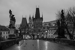 Rainy Morning on Charles Bridge (romanboed) Tags: leica m 240 summilux 50 czech europe cesko czechia prague praha prag praag praga city fall autumn travel tourism 布拉格 прага プラハ براغ 프라하 karluv most charles bridge black white bw monochrome