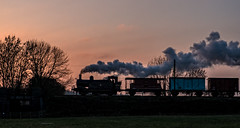 Jinty (Peter Leigh50) Tags: silhouette steam locomotive train van jinty trees track fujifilm fuji xt2 field farmland great gcr gala central railway railroad rural rail sky hurrah last