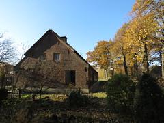 IMG_8995 (Momo1435) Tags: eindhoven brabant waalre herfst herfstkleuren netherlands autumn fall colors