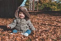 Ella es otoño (administracion7) Tags: arte hojas bebe naranja 50mm belleza niña otoño