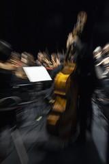 Zooming (Guillermo Relaño) Tags: guillermorelaño nikon d90 cameratamusicalis especial ¿porqueesespecial orquesta orchestra concierto teatro dvorak sinfonia novena 9 nueve nuevomundo nuevoapolo contrabajo zooming