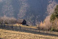 House in Magura, Transylvania (graham2034) Tags: magura transylvania romania house