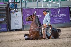 GY8A8760.jpg (Brad Prudhon) Tags: 2018 animals dancing drafthorseshow dressage essentialoilsfarm horse mona september utah youngliving dance