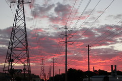 Pink sunrise at the bus stop (danielhast) Tags: houston texas sunrise sky clouds dawn pink morning telephonepole powerlines
