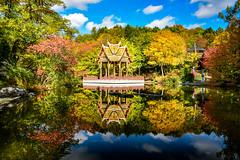 30491945165_926be50325_o (stacheltierchen) Tags: autumn munich westpark pagode reflection bunt amazing color trees herbst germany nikon d3300 flickr travel landscape europe explore bavaria