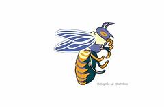 CARTOON BEE, großer Print Patch zum aufbügeln (patchmonkeys) Tags: patch bügelbild style applikation aufbügler streetwear print druck design transfer insekt biene wespe