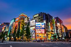 Tokyo Japon.jpg (stephprad) Tags: night 24mm tokyo nikon pub d800 cloud nuage lumineux poblicité ville japon nuit japan sigma