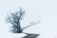 The Road to Nowhere (The Hobbit Hole) Tags: nikon d700 austria 70300 white road vienna wienerwald winter snow