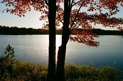 Edit -1-2 (Dane Van) Tags: ccr canadacreekranch atlanta michigan atlantamichigan lakegeneva fall autumn canon rebelg eos 500n 50mm18ii plasticfantastic film analog kodak portra400