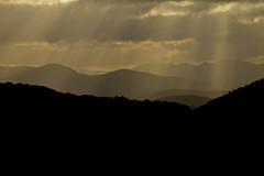 Filtre solaire en Haut-Languedoc (Michel Seguret Thanks for 12,9 M views !!!) Tags: france herault languedoc occitanie michelseguret nikon d800 pro automne autumn fall herbst