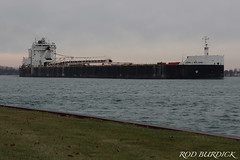 jjb111518s_rb (rburdick27) Tags: asc americansteamshipcompany stclairriver fall scenicmichigan johnjboland
