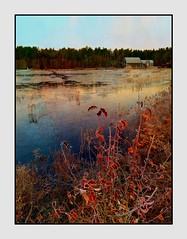 Looking Across The Marsh (windshadow2) Tags: iphone 8 marsh barn water pond