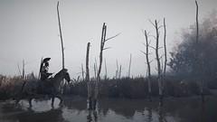 Through The Swamp (nicksoptima) Tags: ps4 assassins creed odyssey ubisoft screenshot swamp landscape