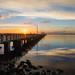 Sunrise at Ballast Point Pier