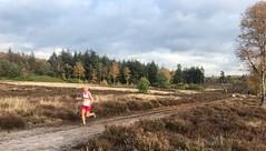 haarlerbergloop 10 km (19)