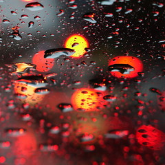concurrent activity (vertblu) Tags: rain raindrops heavyrain downpour windshield rearlights taillights bokeh red yellow grey orange coolwarmcontrast light refraction traffic abstractfeel almostabstract abstractstyle abstract abstrakt abstraction abstracted abstractsquared vertblu circles circlescirclescircles histoiresdô bsquare 500x500 glass glas