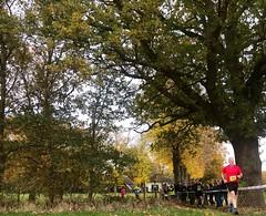 Haarlerbergloop 5 km (22)
