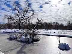 cold & frozen (ekelly80) Tags: dc washingtondc january2019 winter snurlough snow snowstorm shutdown trumpshutdown snowday snowywalk white snowy nationalmall constitutiongardens pond frozen snowcovered ice sky light