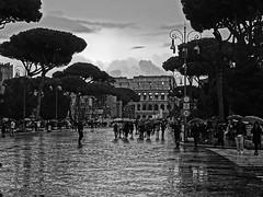 Verso il Colosseo (Ernemann) Tags: roma colosseo biancoenero pioggia