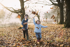 The best things in life are free.... (markfly1) Tags: family children having fun autumn leaves changing colour falling autumnal throwing leafs fall smiling laughing kids young boy girl infant joy happy candid golden colours hues brown yellow orange green red colors pale blue memory memories