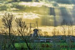Energy (stevefge) Tags: 2019 dijk waaldijk winssen sky yellow mill windmills sunbeams sunlight trees bomen pylon cloud wolken winter landscape gelderland nederland netherlands nl nederlandvandaag reflectyourworld