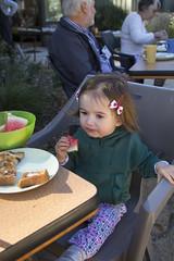 yummy breakfast (louisa_catlover) Tags: portrait family child toddler daughter tabitha tabby dandenongs dandenongranges karwarra karwarraaustraliannativebotanicgarden garden nature outdoor kalorama breakfastwiththebirds