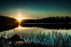 Sunrise at the Lake - 5 (HardDriveKC) Tags: art lightroom adobe dslr digitalslr photograph camera nikon digital missouri photo photography states unitedstatesofamerica united america unitedstates jacksoncounty sky d3400 water morning kansascity lake sun sunrise view tree 1855mm 1855 ngc nikond3400