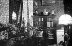 Kabinettrommet med bokskap (1924)