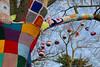 remembering tree (Julaquinte) Tags: rememberingtree 2018 stratforduponavon warwickshire crochet colourful tree gagaukorg yarnbomb
