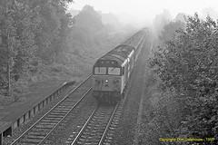 Ajax at Dinton (Don Gatehouse) Tags: britishrail br class50 englishelectric type4 50046 ajax dinton basingstoke exeterstdavids passenger mist