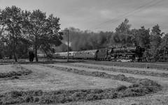 Sonderzüge (12) (Klaus Z.) Tags: eisenbahn kbs 395 leer br 01 1066 personenzug sonderzug westfalendampf dampflok frühling