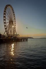 Seattle-1429 (Yale Gurney Pictures) Tags: ferriswheel ferry fish landmark photo photography pike pikemarket pikeplacemarket pugetsound seattle spaceneedle yalegurney washington usa